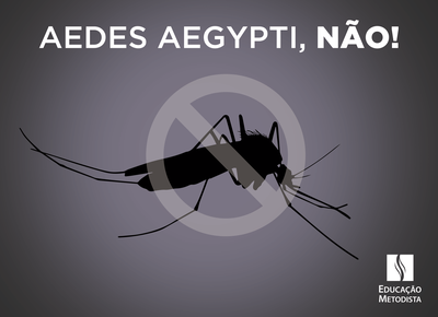 Colégio Metodista Granbery entra na luta contra o mosquito Aedes aegypti